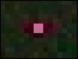 pixel inactif